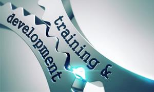 Marcus Bohn Associates Training & Development